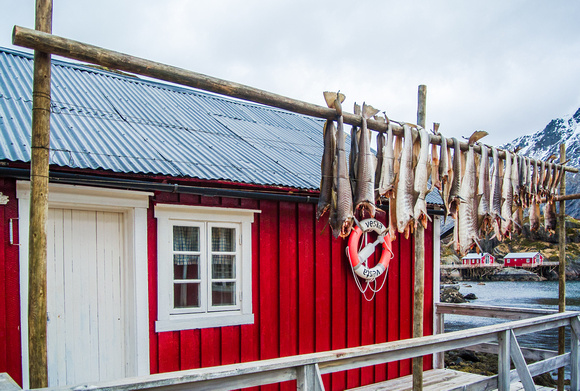 drying cod and cabin